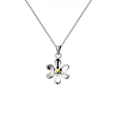 Single Daisy Necklace with a Golden Center